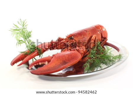 freshly cooked lobster on a platter with dill