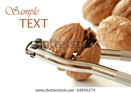 Freshly cracked walnut in nutcracker on white background with copy space.  Macro with shallow dof.