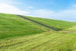 Freshly cut grass on the dike