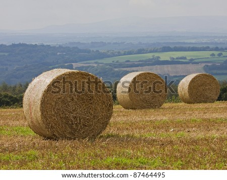 Freshly cut hay baled for collection in a Devonshire field in the late summer, UK