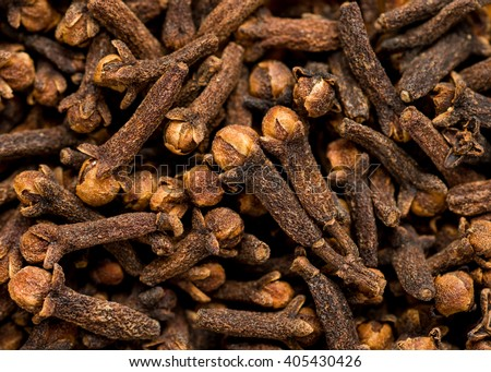 freshly dryed clove spice texture close up #405430426