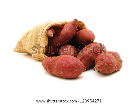 Freshly dug new sweet potatoes in burlap sack on white background