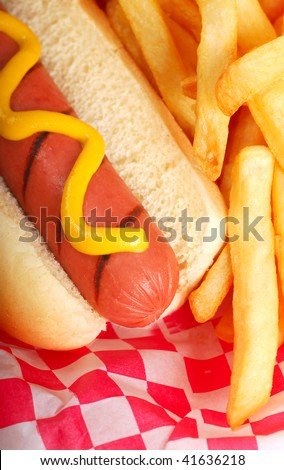 Freshly grilled hot dog with mustard and french fries