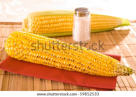 Freshly grown and tasty corn on the cob. - stock photo