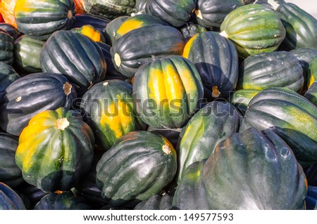 Freshly harvested Acorn Squash on display at the market