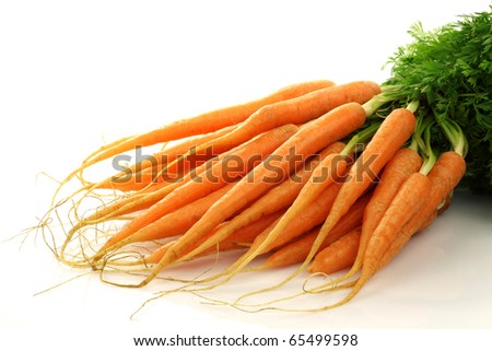 freshly harvested bunch of carrots on a white background