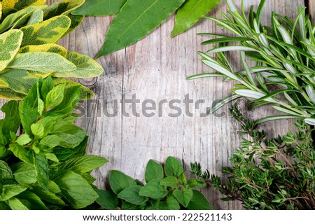 Freshly harvested herbs, herbs frame over wooden background. Copyspace.