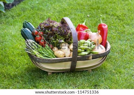 freshly harvested home grown vegetables in a wooden trug