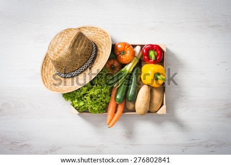 Freshly harvested vegetables in a wooden crate, top view
