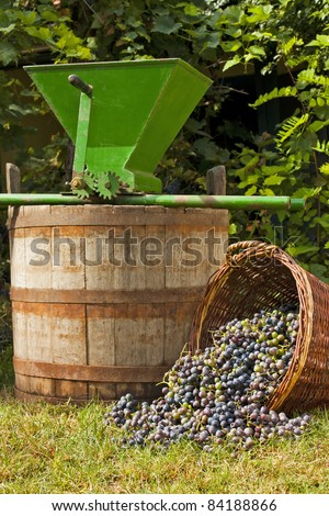 Freshly harvested wine grapes spilling from a wicker basket with a wine barrel and a vintage grape crusher