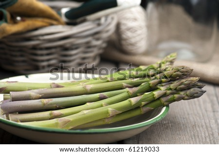 Freshly Picked Asparagus Laid Out In An Enamel Dish On A Rustic Kitchen Table, With A Basket, Gardening Gloves, Secateurs and String In The Background