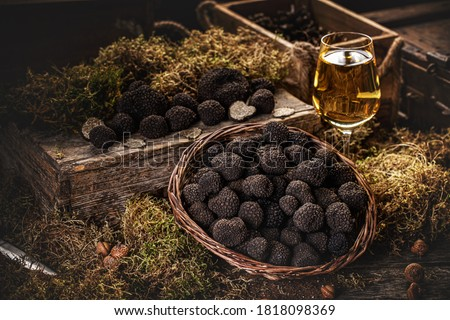 Freshly picked black truffles on market table with very fancy decoration Foto stock ©