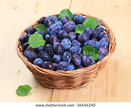 Freshly picked damson plums
