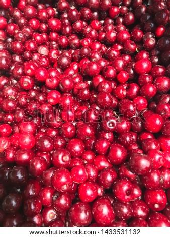 Freshly picked sour acerola cherries  #1433531132