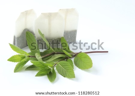 Freshly picked twigs of  Peppermint and peppermint tea bags before a white background