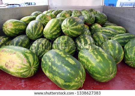 Freshly picked watermelons #1338627383
