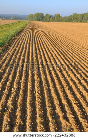 freshly plowed of land field forming furrows #222432886