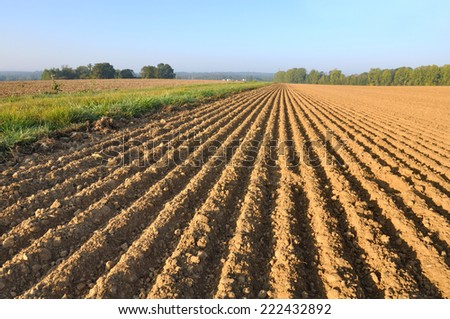 freshly plowed of land field forming furrows #222432892