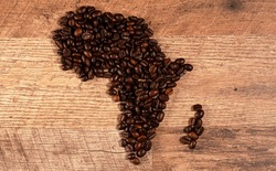 Freshly roasted coffee beans in shape of Africa continent.