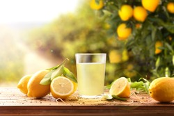 Freshly squeezed juice on a wooden table full of lemons with lemon trees in the background and a ray of sunlight. Front view. Horizontal composition.