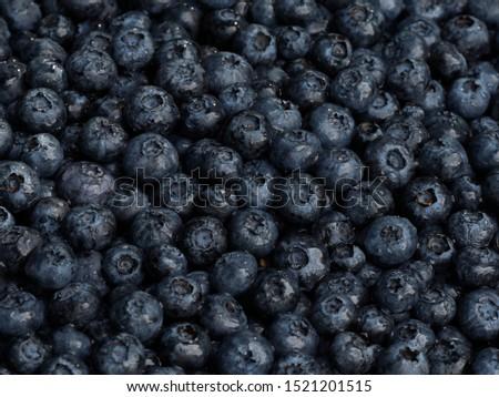 Freshly washed blueberry harvest closeup.