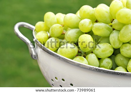 Freshly washed grapes in colander with natural outdoor bokeh as background. with extremely shallow dof.