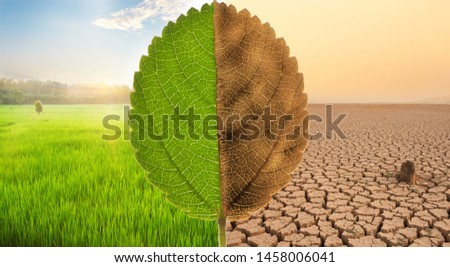 Freshness scene of Green meadow fields with beautiful sunset and Despair of Dry cracked earth with dead tree and polluted environment metaphor Ecology, earth day, Nature disaster and Climate change #1458006041