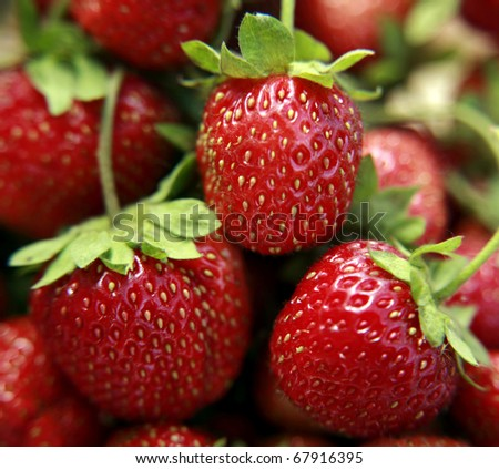 Freshness strawberries closeup