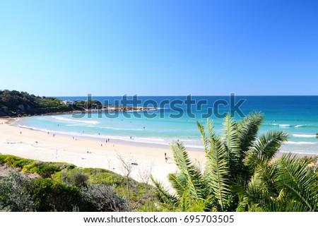 Freshwater beach, Sydney #695703505