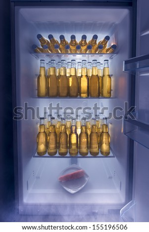 Fridge full of cold beer with one lonely carrot / Man fridge concept