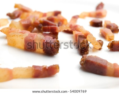 Fried bacon bits on a white background.