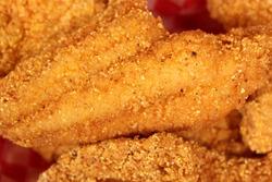 Fried Catfish Fillets in Rural Cafe