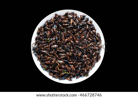 Fried crickets at the plate on a black background.