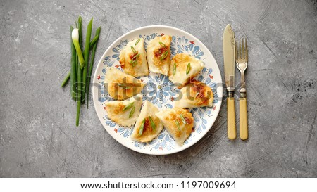 Fried dumplings with meat filling sprinkled with fresh chive on a blue colorful plate. Top view on gray stone background