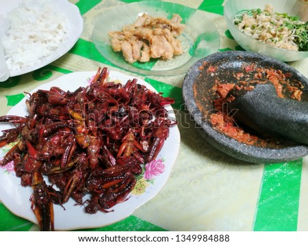 Fried grasshopper with onion sauce. Grasshoppers obtained in rice fields then cleaned and cooked. #1349984888