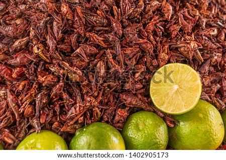 Fried grasshoppers (chapolenas) and lemon at a market, Mexico #1402905173