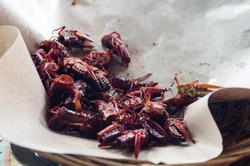 Fried grasshoppers / Chapulines in Indonesia, 2017