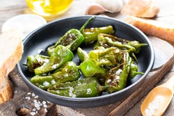 Fried green peppers Galician style in salt. Spanish cuisine. Selective focus. Pimientos de Padron.