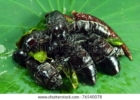 Fried june beetle the exotic menu in thailand