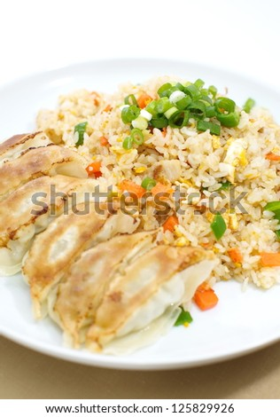 Fried rice with Fried dumplings set