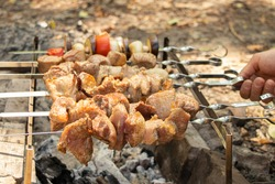 fried shish kebab on a fire in the forest on a picnic on skewers, roast shish kebab in nature, meat
