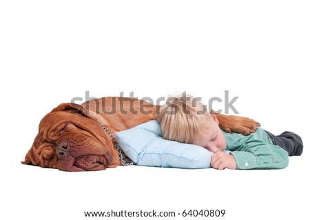 Friends. Big dog hugging boy while sleeping isolated on white