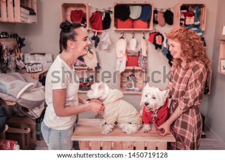 Friends laughing. Cheerful happy friends laughing while taking clothing on their cute dogs