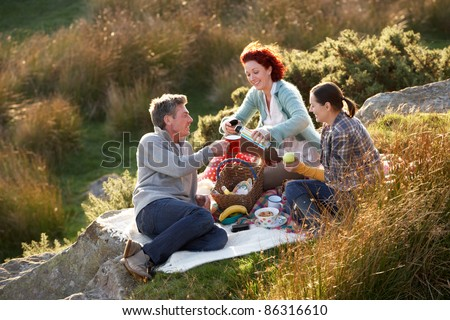 Friends on country picnic