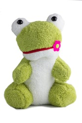 frog doll isolate on white background,lovely
