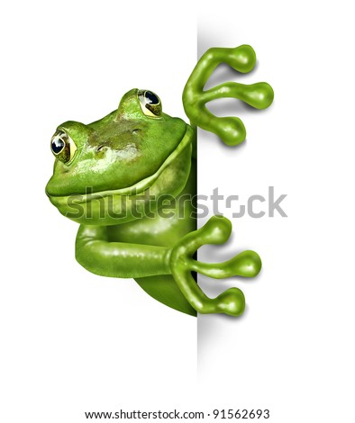 Frog holding a blank vertical sign front view represented by a green happy smiling amphibian holding a white background card for an advertising promotion presenting an important announcement. - stock photo