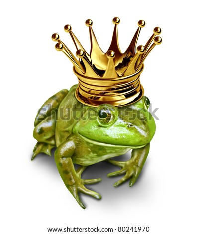Frog prince with gold crown representing the fairy tale concept of change and transformation from an amphibian to royalty.