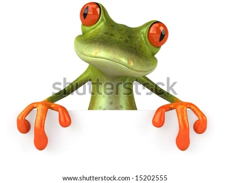 Frog with a blank sign - stock photo