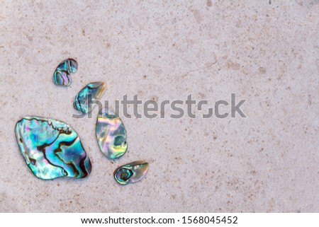 From above photo of shells, glass, stones, mother of pearl and Paua Shell in a circle - semi circle.  #1568045452