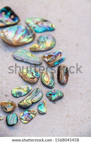 From above photo of shells, glass, stones, mother of pearl and Paua Shell in a circle - semi circle.  #1568045458